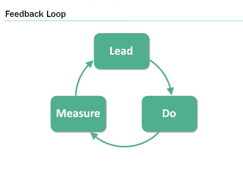 feedback loop in sociocracy
