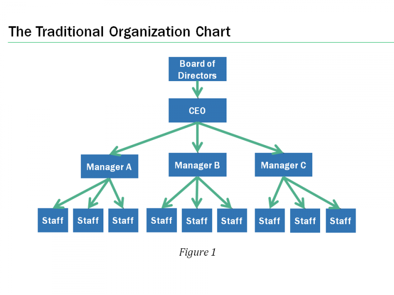 hierarchy org chart